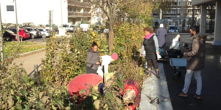 Samedi 23 octobre 2021 : Jardinage à l'APMV
